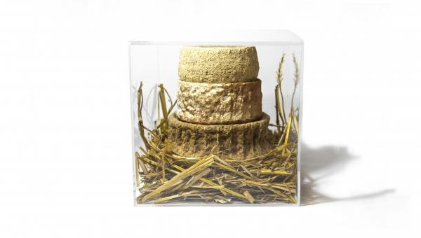 Birki Cheese Cake